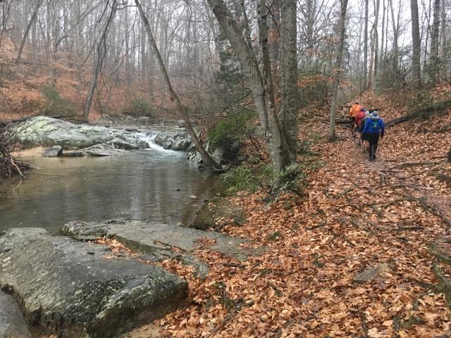 DD100 on the Trail